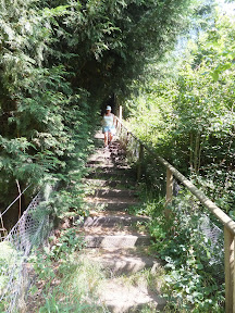 A rare set of steps down a steep hill leading down to the crossing of the River Deben
