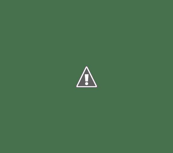 Profesor Dr. Juan Enrique Romero, el intendente interino, José Luis Vidal dio comienzo al Programa Municipal de Tenencia Responsable de Perros y Gatos