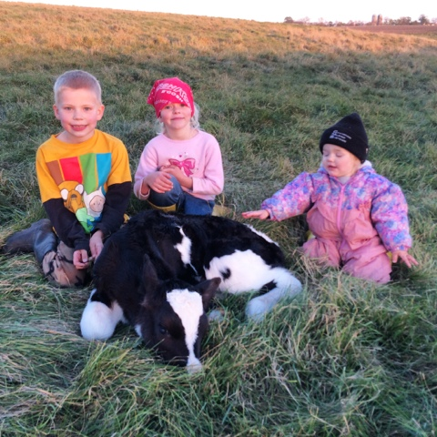 kids with new calf