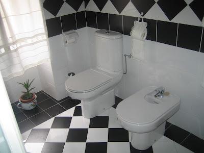 Ba o blanco y negro construcciones provibur for Banos en blanco y negro