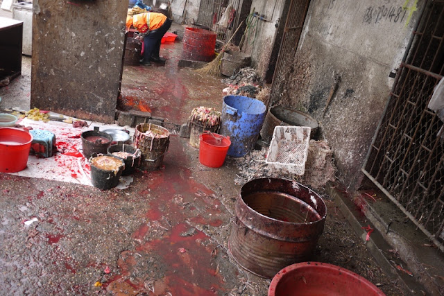 scene of blood and buckets filled with bird innards