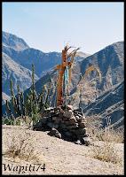 Un mois aux pays des Incas, lamas et condors (Pérou-Bolivie) 031%2520%25287%2529