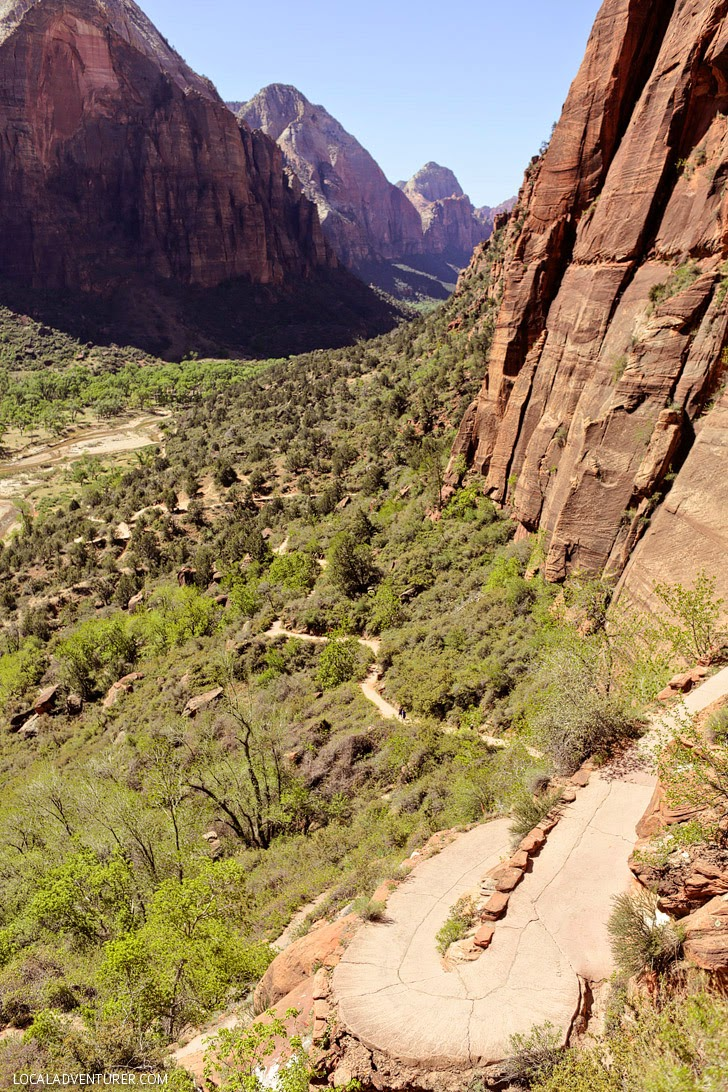 West Rim Trail Zion.