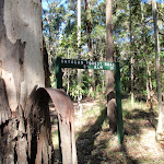 end of Hammonds road (62489)