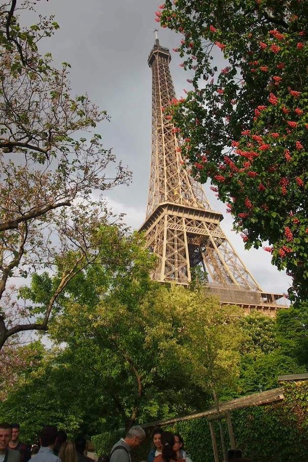 パリからただいまー