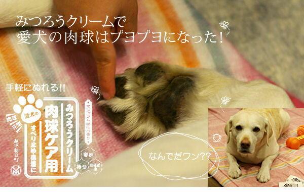 肉球用クリーム ワックス クリーム みつろう 愛犬