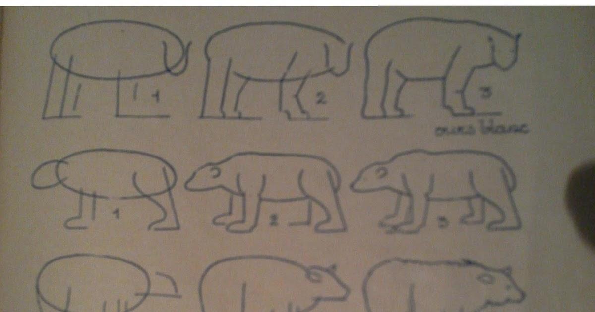 Dessins astuces pour debutants dessiner un ours - Dessiner un ours en maternelle ...