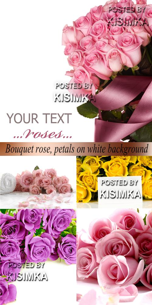 Stock Photo: Bouquet rose, petals on white background