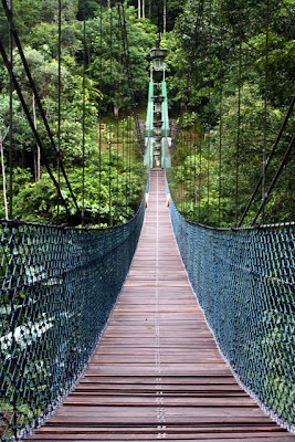 Bridge over a river in Ulu Temburong National Park in Brunei on Borneo