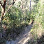 Flat Rock Creek track (172302)