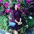 Saranya Krishnamoorthi avatar image