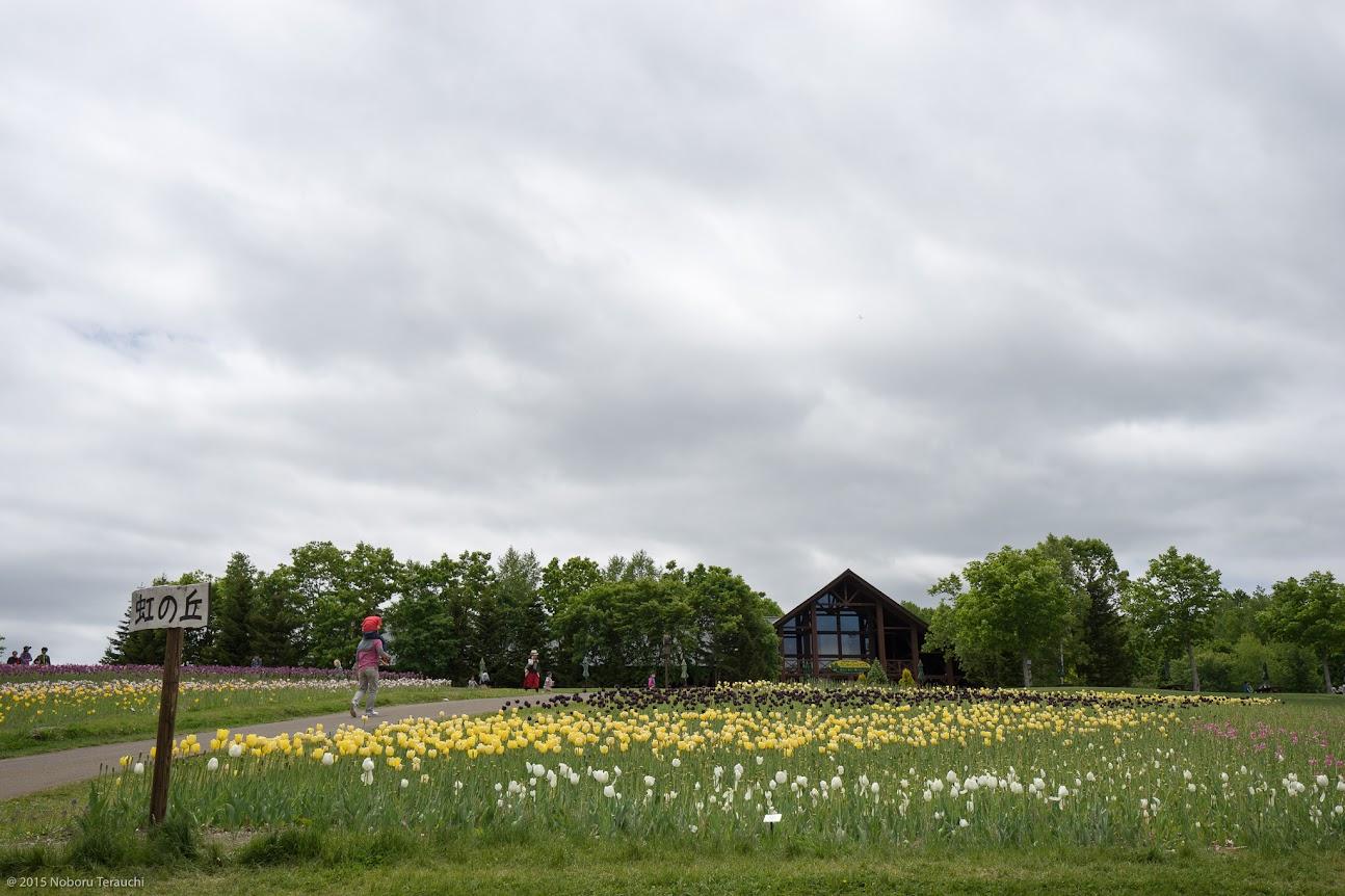 カントリーガーデン「山のお花畑」