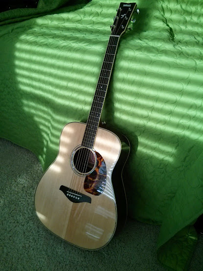 Let's see your guitar mods - The Acoustic Guitar Forum