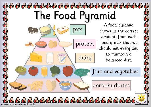 Groups Based On The Food Guide Pyramid