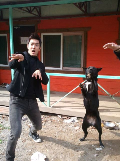 Siwon and a dog