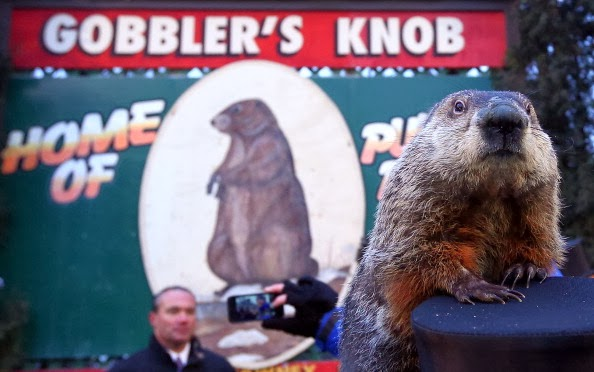 Gobbler's Knob | Photo by Alex Wong | Getty Images