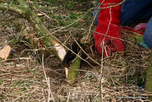 nk Maasheggenvlechten Oeffelt 11-03-2012 (2).JPG