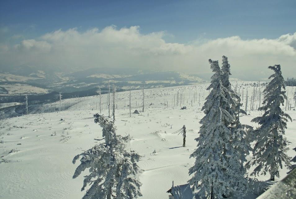 Widok z wieży na Baraniej Górze