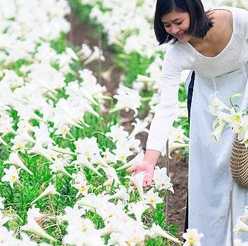 Chi Van Nguyen Photo 11