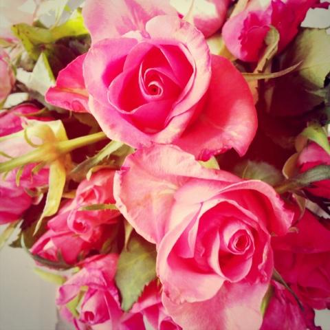Blumen, Blumen, Blumen...