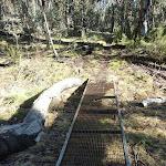 Metal grate in Kosciuszko National Park (297044)