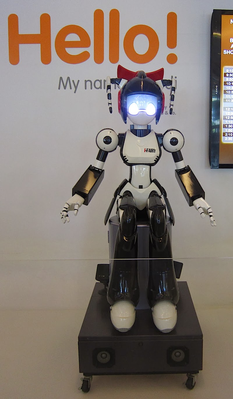 Aedi, the Mind Museum robot