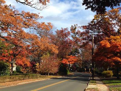 New Jersey mùa thu