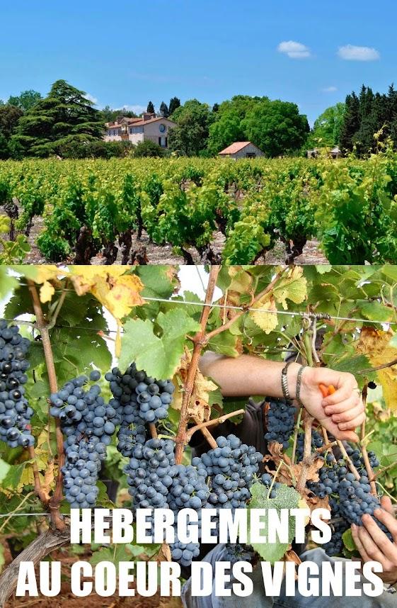 hebergements+au+coeur+des+vignes-en+dracenie-draguignan-var-provence-tourisme-paca-vendanges-insolite-oenotourisme