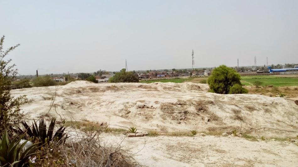 A Saline Landscape