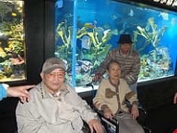 池袋水族館