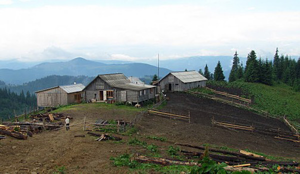 Carpathians dairy farm