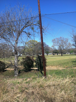 Lions Municipal Golf Course, 2901 Enfield Road, Austin, TX 78703, United States