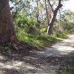 Sid Pulsford Walking trail (233981)