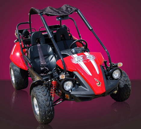 250cc GTS Hammerhead Twister Dune Duggy Red