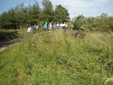 150km en ligne! Amsterdam-Leeuwarden: 22-23/6/2013 DSC02565