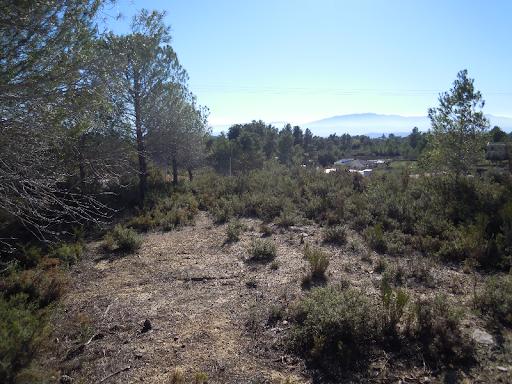 Particular vende terreno en Alborache (Valencia)  - Foto 6