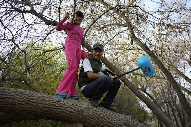 young couple in Yinchuan on a tree limb