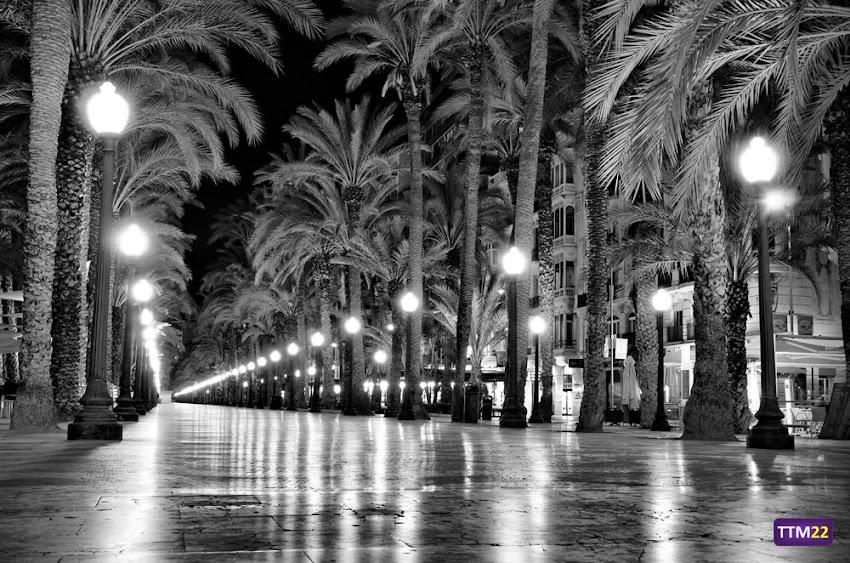 18-55 mm, Alicante, Explanada de España, HDR, Nikon D5100, Nocturnas, Paisajes, Paseo de la Explanada, Blanco y negro,