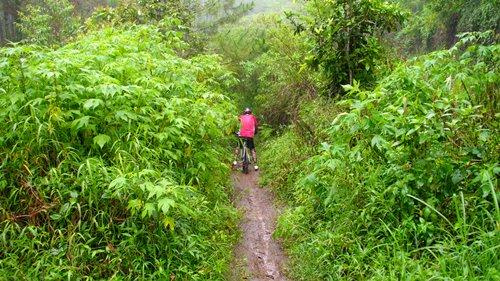 Perjalanan dilanjutkan dengan melibas single track yang ada di kawasan hutan Cangar. Kebetulan sedang turun hujan, jadi track semakin licin dan menantang :D