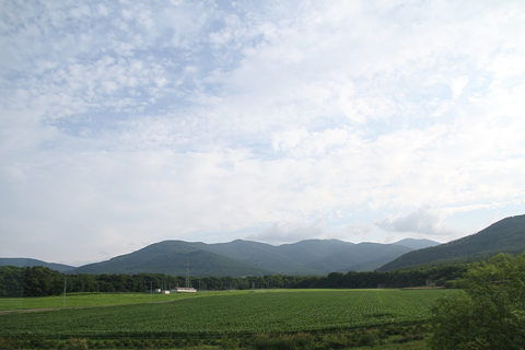 JR北海道 「リバイバルまりも」 車窓 狩勝越え