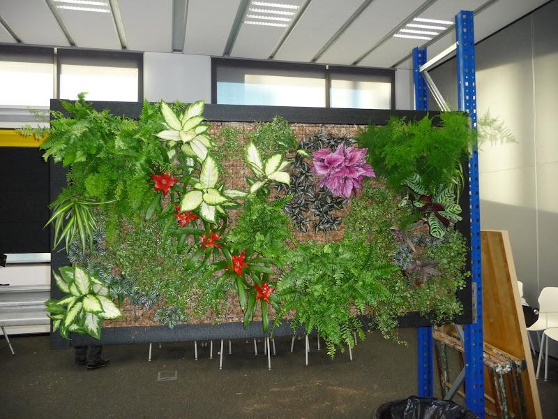 Formación de jardines verticales curso jornada intensivo jardín vertical green wall charla