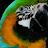 Tonya Adams avatar image