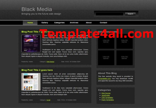 Media Network Black CSS Website Template