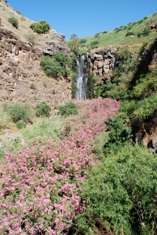 gilaboon waterfall in the golan heights