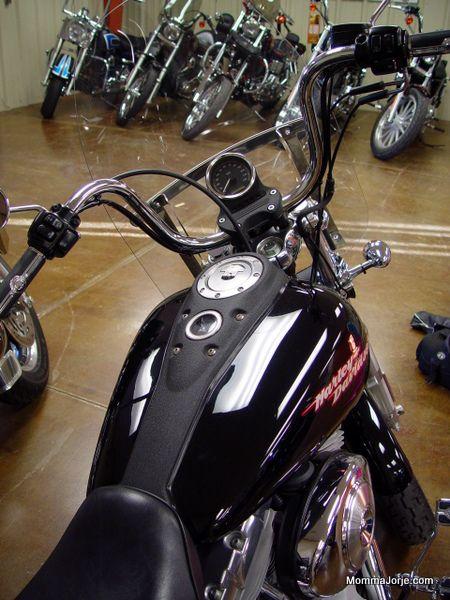 Momma Jorje's Harley Davidson