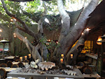 Inside the wonderfully scenic Cliff's Edge restaurant. You'd never guess it was right off Sunset Blvd in East L.A.
