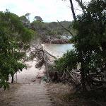 Stairs onto Bittangabee Beach (106564)