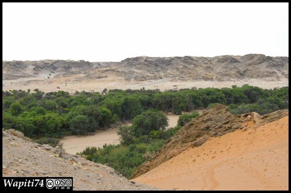 Balade australe... 11 jours en Namibie - Page 2 IMG_0684