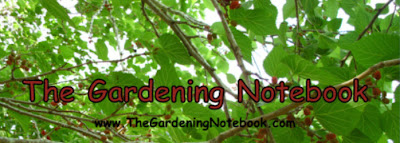 Ebook on sale: the Gardening Notebook
