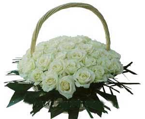 Bunga Rangkaian Toko Bunga Cipadu